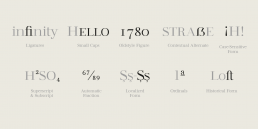 Free Modern Serif Fashion Font
