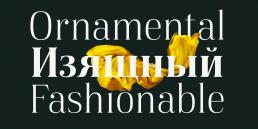 Beautiful and fashionable free serif font